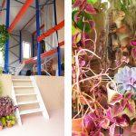 Minitopia-Den-Bosch-Indebuurt-fotografie-Nikki-Segers