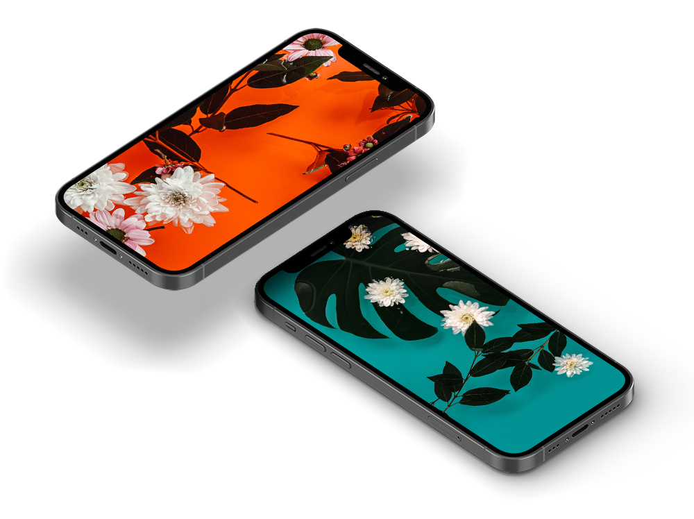 iPhone flower wallpapers