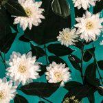 gratis iPhone wallpaper bloemen Nikki Segers fotografie flowers Den Bosch